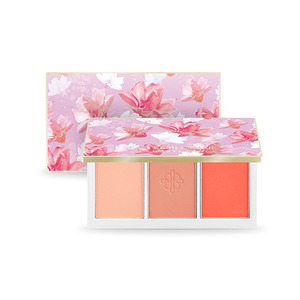 A'PIEU Pastel Blusher Collection Marymond Edition #2 Letters Form You